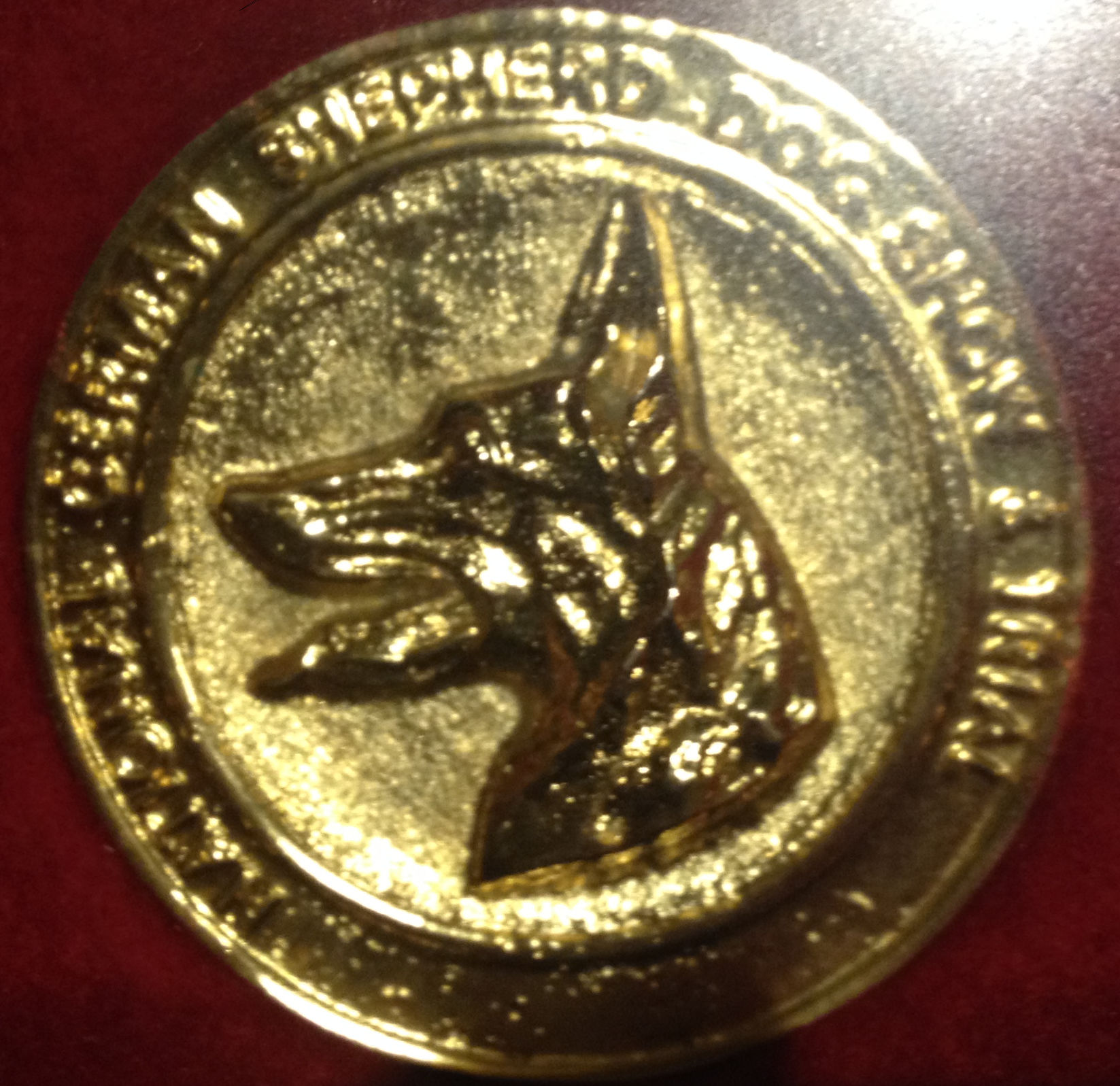 German-Shepherd-National-Gold-Medal